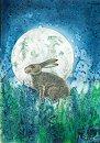 خرگوش و ماه
